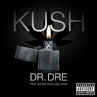 Přední strana obalu CD Kush