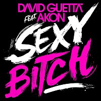 David Guetta, Akon – Sexy Bitch