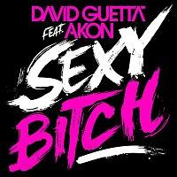 David Guetta – Sexy Bitch