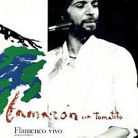 Přední strana obalu CD Flamenco Vivo [En Directo / Remastered 2018]