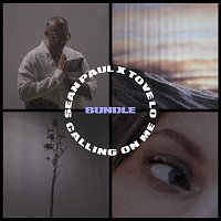 Sean Paul, Tove Lo – Calling On Me