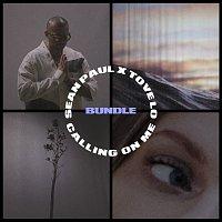 Sean Paul, Tove Lo – Calling On Me