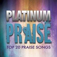 Maranatha! Praise Band – Platinum Praise