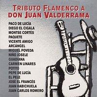 Various – Tributo Flamenco A Don Juan Valderrama