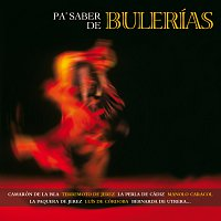 Různí interpreti – Pa Saber De Bulerías