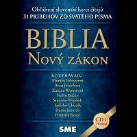 Různí interpreti – Biblia. Nový zákon 1 (SME)