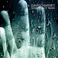 David Charvet – Sometimes It Rains
