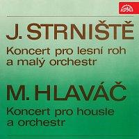 Různí interpreti – Strniště: Koncert pro lesní roh a malý orchestr, Hlaváč: Koncert pro housle a orchestr