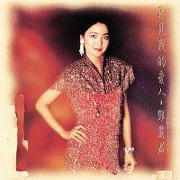 Přední strana obalu CD Zai Jian Wo De Ai Ren