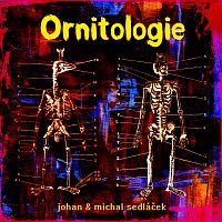 Johan a Michal Sedláček – Ornitologie