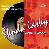 Vejvodova kapela – Škoda lásky (+ bonusy) MP3