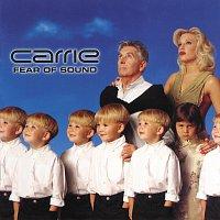Přední strana obalu CD Fear Of Sound