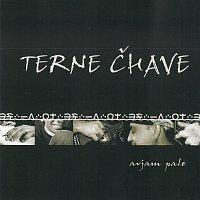 Terne Čhave – Avjam Pale