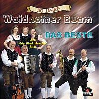Waidhofner Buam – 30 Jahre - Das Beste