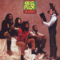 Steel Pulse – True Democracy