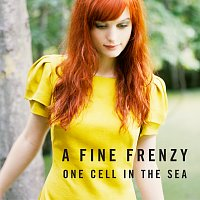 A Fine Frenzy – One Cell In The Sea