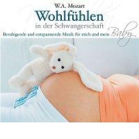 Various Artists.. – Mozart: Wohlfuhlen in der Schwangerschaft - Beruhigende und entspannende Musik fur mich und mein Baby