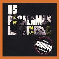 Os Paralamas Do Sucesso, Gilberto Gil – Arquivo