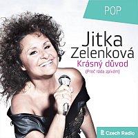 Jitka Zelenková – Krásný důvod