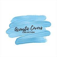 Různí interpreti – Acoustic Covers Collection