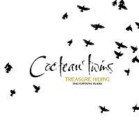 Cocteau Twins – Treasure Hiding: The Fontana Years