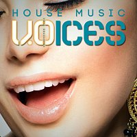 Void Orchestra – House Music Voices