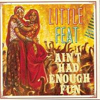 Little Feat – Ain't Had Enough Fun