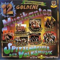 Různí interpreti – 12 Goldene Musikanten