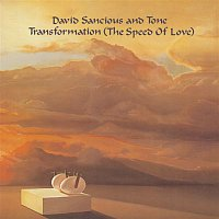 David Sancious, Tone – Transformation (The Speed of Love)