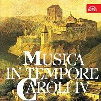 Různí interpreti – Hudba za vlády Karla IV.