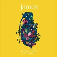 James – Leviathan (Acoustic)