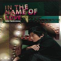 Přední strana obalu CD In The Name of Love
