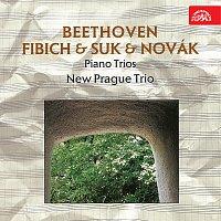 Nové pražské trio – Tria (Beethoven, Fibich, Suk)