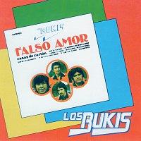 Přední strana obalu CD Falso Amor