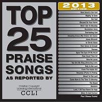 Top 25 Praise Songs 2013 Edition