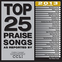 Různí interpreti – Top 25 Praise Songs 2013 Edition