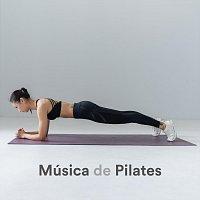 Přední strana obalu CD Música de Pilates