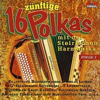 Různí interpreti – 16 zunftige Polkas mit der Steirischen Harmonika / Folge 3