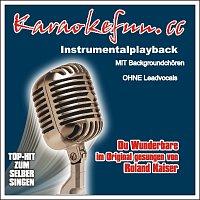 Karaokefun.cc VA – Du Wunderbare - Karaoke