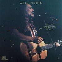 Willie Nelson – What A Wonderful World