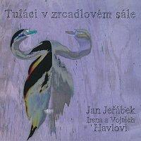 Jan Jeřábek, Irena a Vojtěch Havlovi – Tuláci v zrcadlovém sále