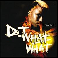 Přední strana obalu CD What For?