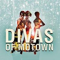 Různí interpreti – Divas of Motown [E Album set]