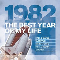 A Flock Of Seagulls – The Best Year Of My Life: 1982