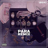 Lani Mo, Ricky Rich, Thrife, Dree Low, Blizzy, Nathan K – PARA [Remix]