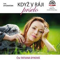 Přední strana obalu CD Otčenášek: Když v ráji pršelo