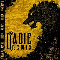 Farruko, Ozuna & Lunay, Sech & Sharo Towers – Nadie (Remix)