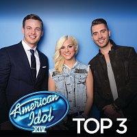 Různí interpreti – American Idol Top 3 Season 14