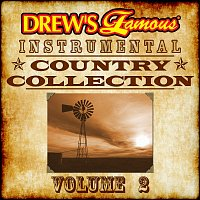 The Hit Crew – Drew's Famous Instrumental Country Collection, Vol. 2