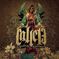 Calle 13 – Residente o Visitante